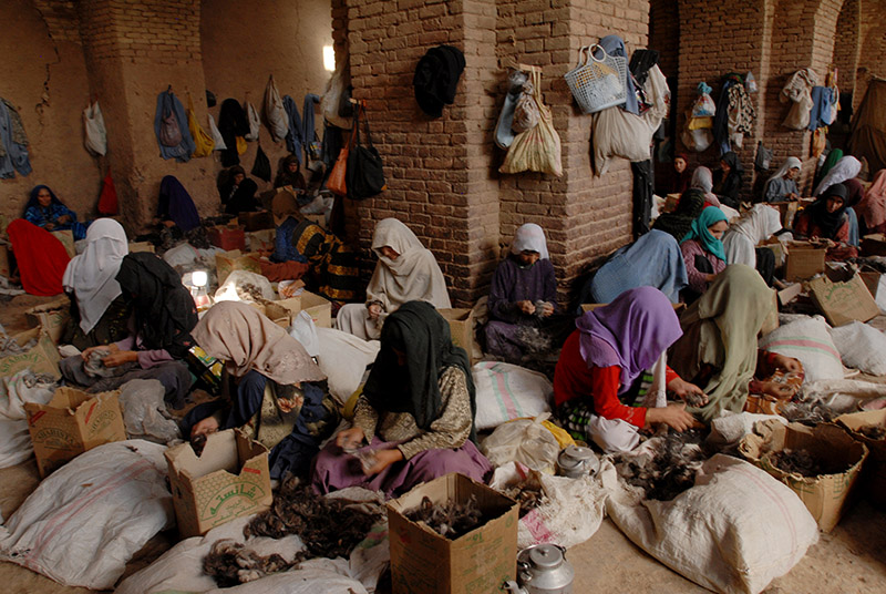 Herat, Afghanistan. © Farzana Wahidy